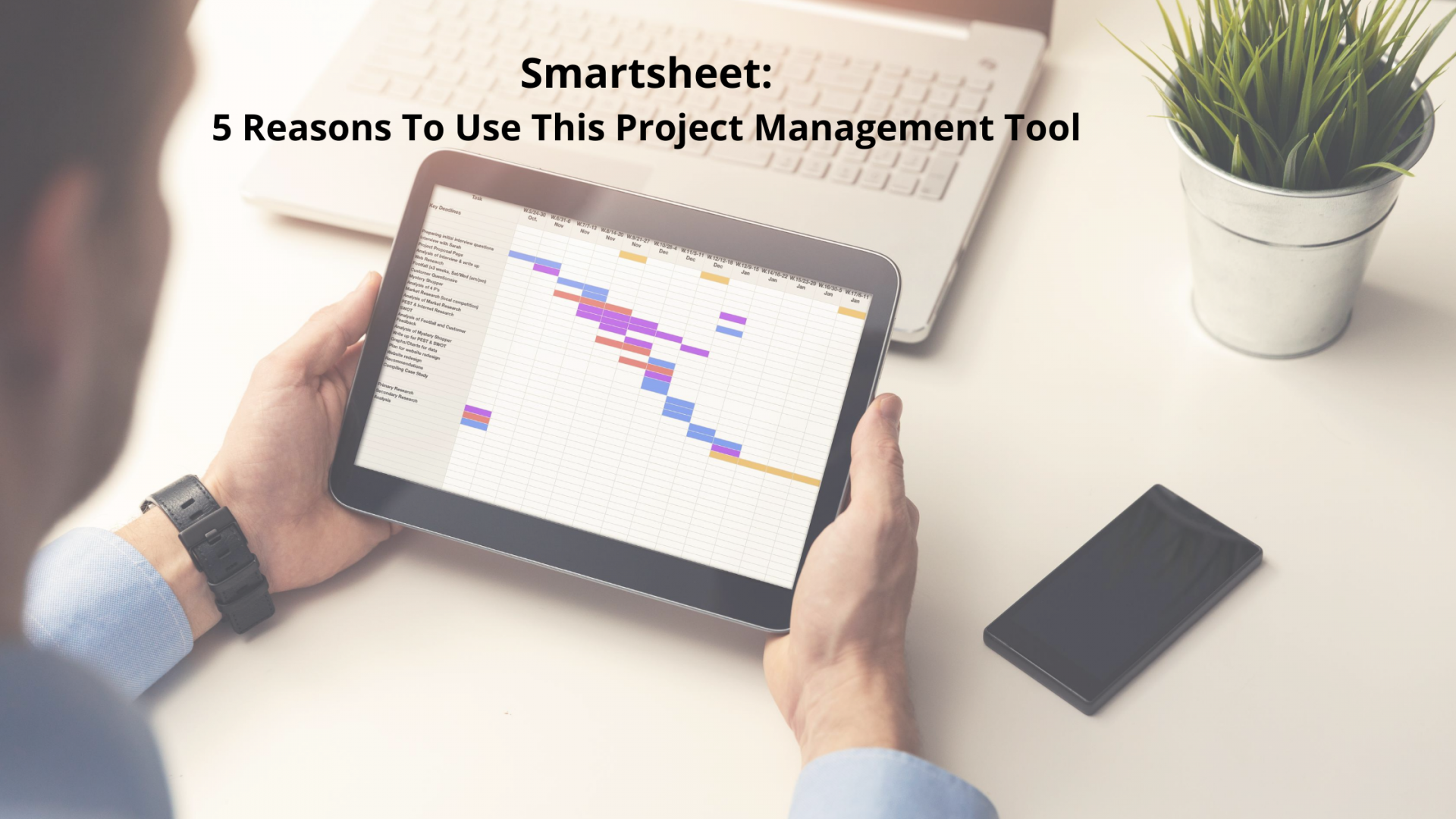 Smartsheet as PM Tool